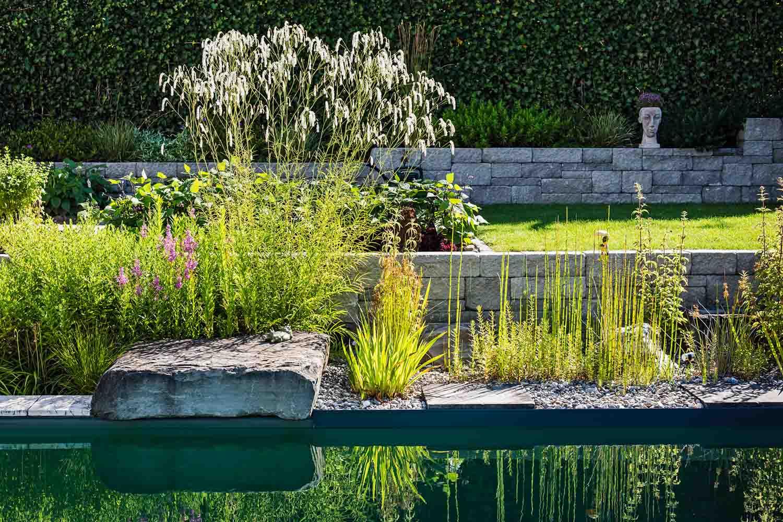 In Diesem Garten In Der Region Hegau Bilden Die Mauern Einen Ruhigen  Hintergrund Für Die Stauden. Im Stillen Wasser Des Naturpools Spiegeln Sich  Gräser, ...