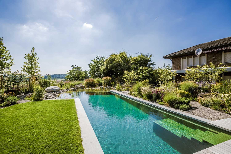 Bei Diesem Gartenprojekt In Der Region Frauenfeld Wurde Ein Bestehender,  Alter Pool In Einen Modernen Natur Pool Umgebaut. Im Vordergrund Sieht Man  Die Neu ...